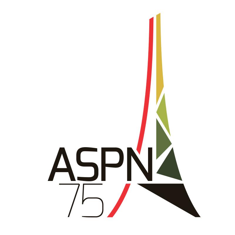Studio irresistible Logo-asnp75