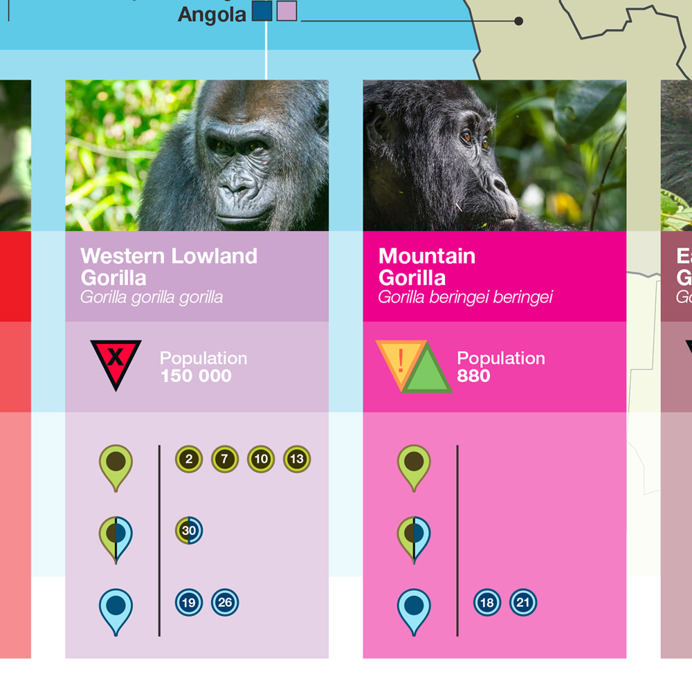 Great Apes Science UNESCO _ Design Agence Si